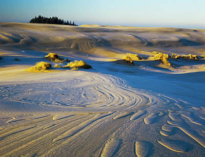Frost Turns The Sand White Art Print