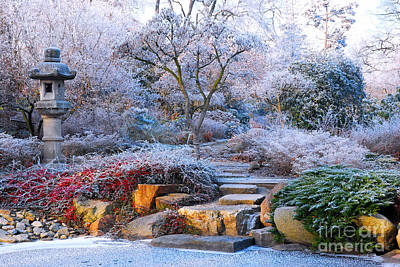 Photograph - Frosted Japanese Garden In Wroclaw-poland by Lilianna Sokolowska