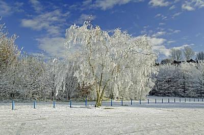 Thomas Kinkade - Frosted Trees - Newton Road Park by Rod Johnson