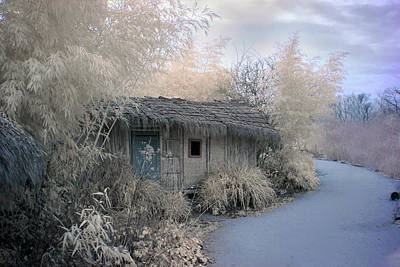 Hut Photograph - Frosty Cabin by Alida Jorissen
