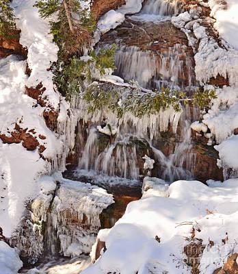 Photograph - Frosty Cascades by Kelly Black
