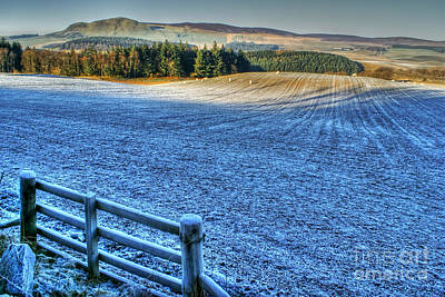 Photograph - Frosty Day In West Lothian by David Birchall