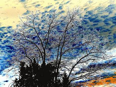 Digital Art - Frosty Fall Tree by Will Borden