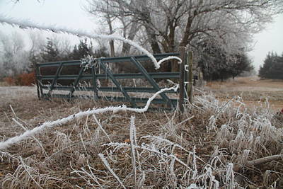 Photograph - Frosty Fence by Alicia Knust