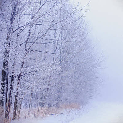 Frosty Forest Frontier - Artistic  Art Print by Chris Bordeleau