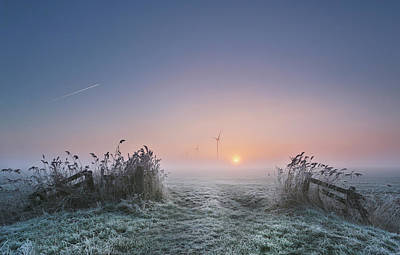 Friesland Photograph - Frosty Morning by Anna Zuidema