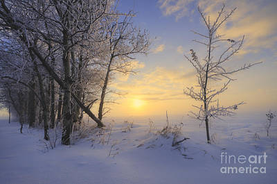 Rural Landscapes Photograph - Frosty Morning by Dan Jurak