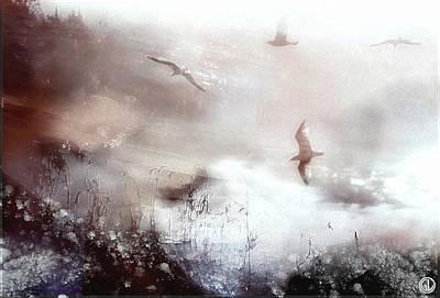 Morning Light Digital Art - Frosty Morning by Gun Legler