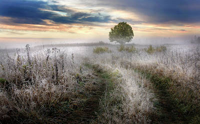 September Photograph - Frosty Morning by Kirill Volkov