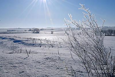Photograph - Frosty Morning by Larry Ricker