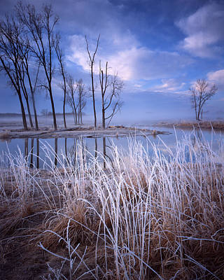 Frosty Morning Art Print by Ray Mathis