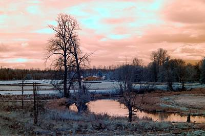 Photograph - Frosty Morning by Rebecca Parker