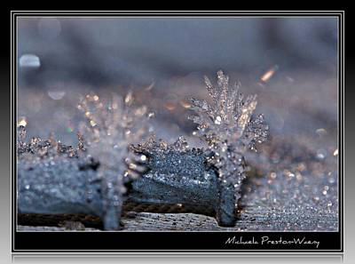 Photograph - Frosty Nails by Michaela Preston