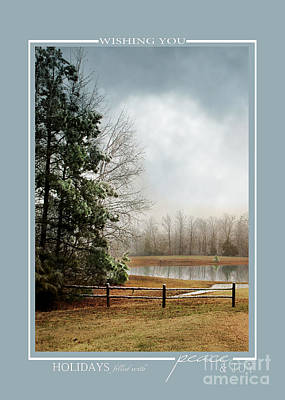 Photograph - Frosty Pond Winter Landscape Christmas Cards by Jai Johnson