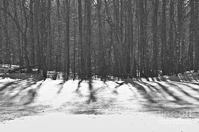 Wine Beer And Alcohol Patents - Frosty Shadows by Cheryl Baxter