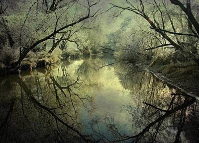 Frozen Photograph - Frosty Silence by P R I
