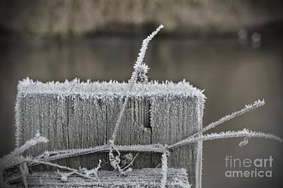Photograph - Frosty Start by Jeremy Hayden
