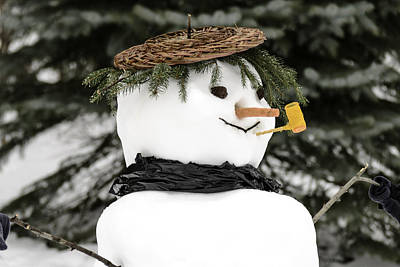 January Photograph - Frosty The Snowman by LeeAnn McLaneGoetz McLaneGoetzStudioLLCcom