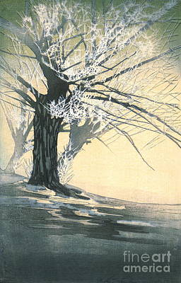 Frosty Tree 1920 Art Print