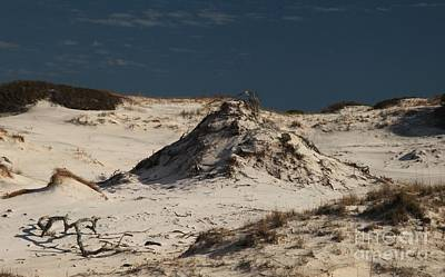Photograph - Frosty White Dunes by Adam Jewell