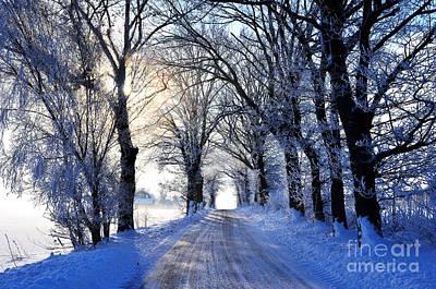Wilderness Camping - Frozen alley by Kennerth and Birgitta Kullman