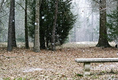 Photograph - Frozen Bench by Sue McGlothlin