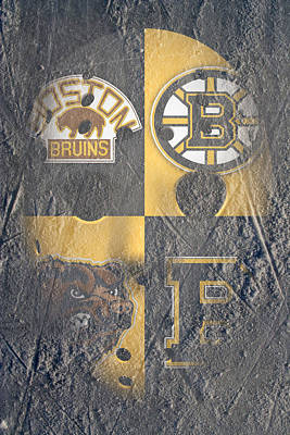 Photograph - Frozen Bruins by Joe Hamilton