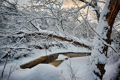 Winter Scene Photograph - Frozen Creek by Sebastian Musial