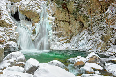 Photograph - Frozen Emerald by Bill Wakeley