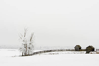 Photograph - Frozen Farm by Mary Jo Allen