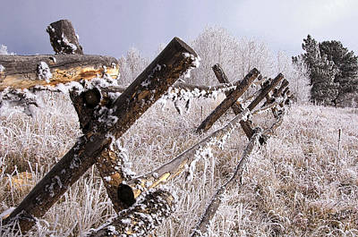 Photograph - Frozen Fence 2 by A Hint of Color Photography