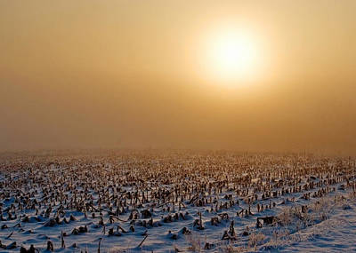 Photograph - Frozen Field by Todd Klassy