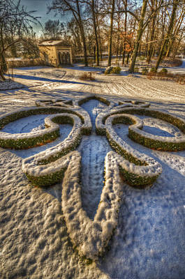 Pine Cones Digital Art - Frozen Garden  by Nathan Wright
