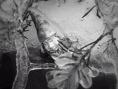 Photograph - Frozen Gnome Black And White by MM Anderson