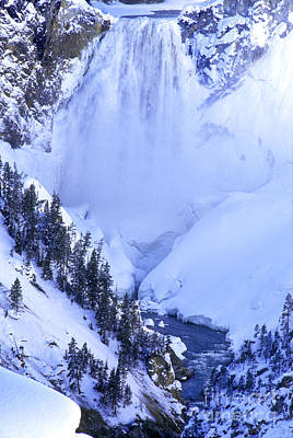 Photograph - Frozen In Time Yellowstone National Park by Dave Welling