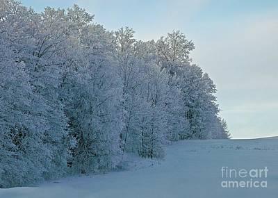 Photograph - Frozen Lace by Christian Mattison
