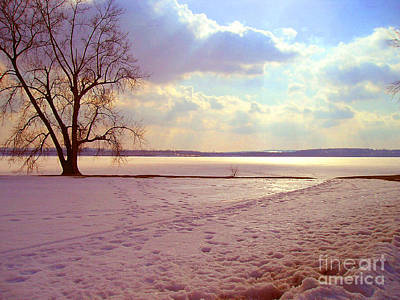 Frozen Lake II Art Print by Silvie Kendall