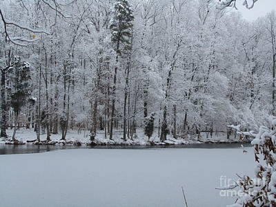 Photograph - Frozen Lake by Jaclyn Hughes Fine Art