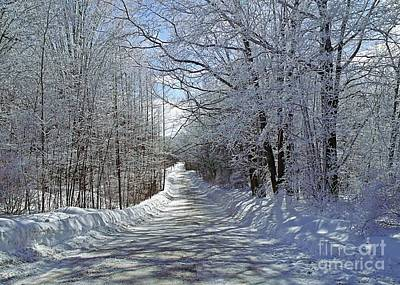 Photograph - Frozen Lane by Christian Mattison