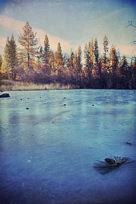 Frozen Art Print by Laurie Search