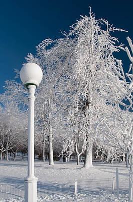 Photograph - Frozen Lightpost by Guy Whiteley