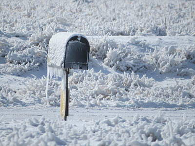 Frozen Mail Box Art Print by Suzy Pal Powell