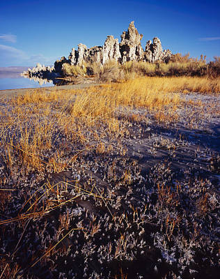 Photograph - Frozen Marsh And Tufa by Tom Daniel