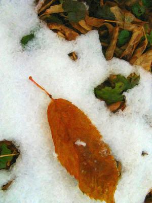 Forest Floor Photograph - Frozen Nature - Digital Painting Effect by Rhonda Barrett