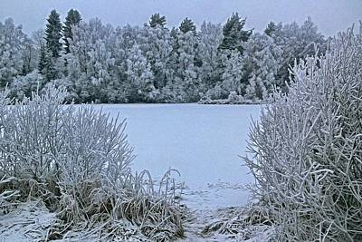 Digital Art - Frozen Pond 2 by Jean-Louis