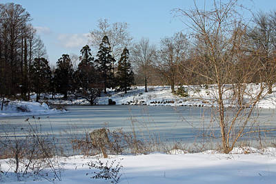 Snowmageddon Photograph - Frozen Pond by Carolyn Stagger Cokley
