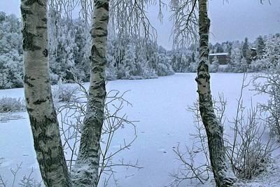 Digital Art - Frozen pond by Jean-Louis