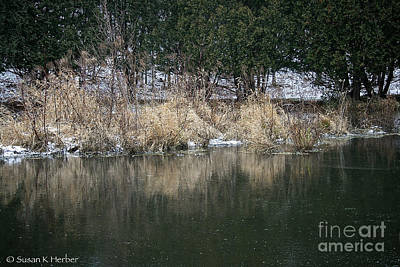 Photograph - Frozen Pond by Susan Herber