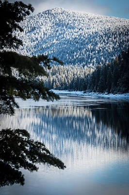 Frozen Reflection Art Print by Jan Davies