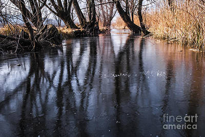 Frozen River Art Print by Yuri Santin
